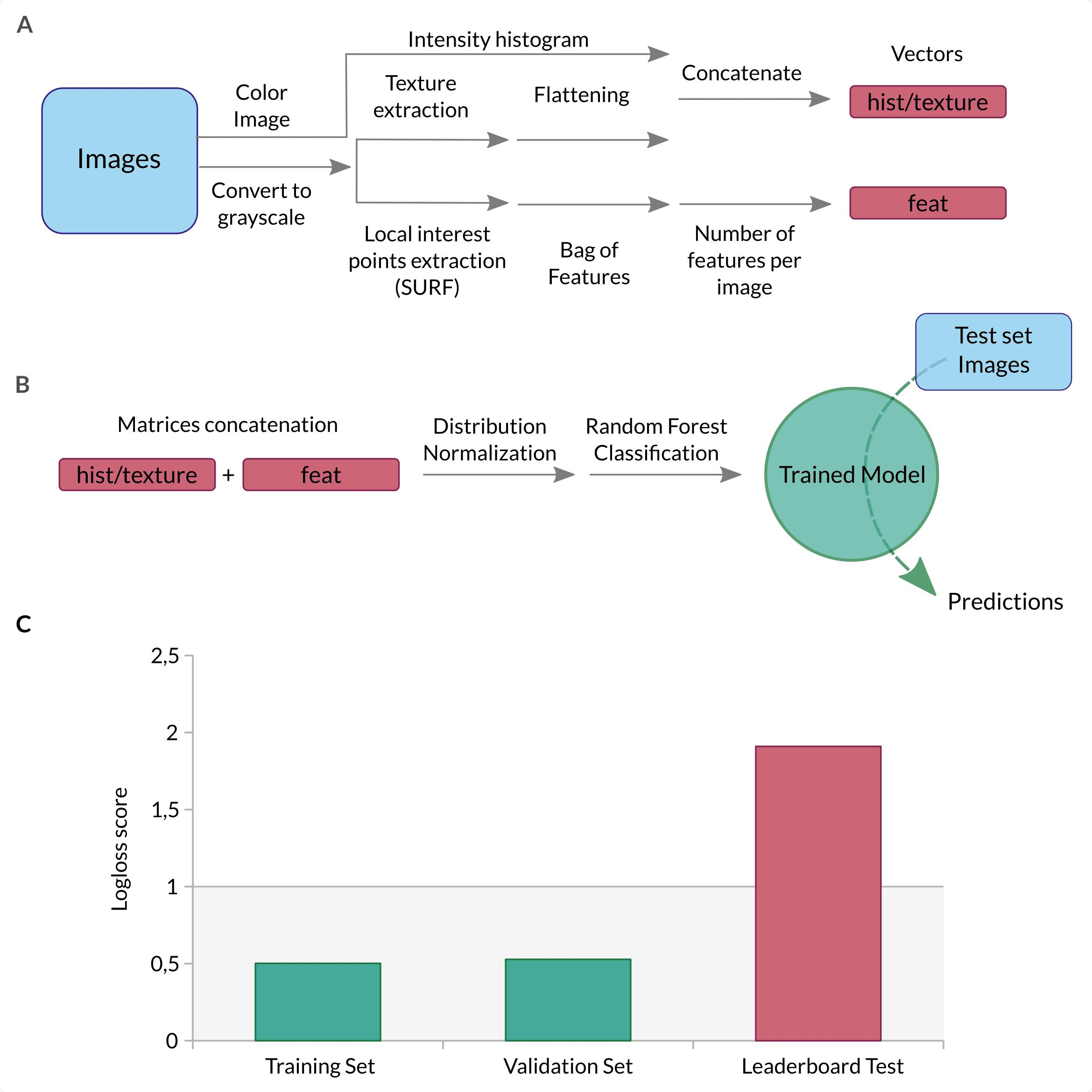 Figure 2. Description of the Bag of features approach.